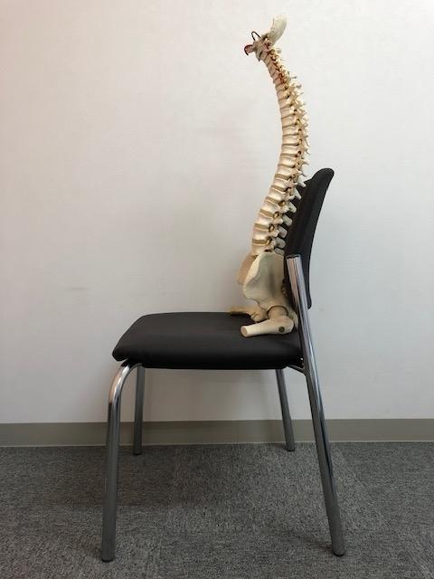 正しい骨盤